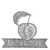 Apple with banner woodcut Royalty Free Stock Image