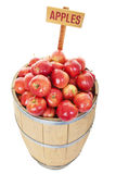 Apple Barrel Royalty Free Stock Photo