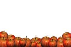 Apple basa Immagine Stock Libera da Diritti