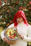 Apple basket Royalty Free Stock Image