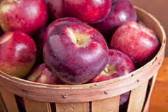 Apple Basket Stock Photography