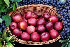 Apple basket Stock Photo