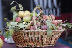 Apple in the basket Royalty Free Stock Images