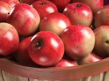 apple basket close-up 3d illustration Royalty Free Stock Photo