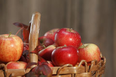 Apple basket closeup with leaves Royalty Free Stock Photo