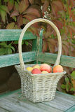 Apple in basket Stock Photos
