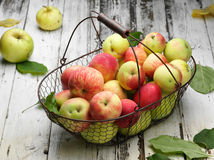 Apple basket Stock Images