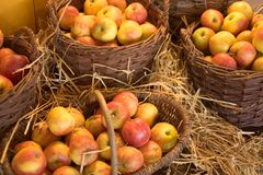 Apple baskets. Apples in baskets, shallow DOF Stock Photos