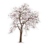 Apple-Baum im Winter mit gefallenen Blättern Lizenzfreies Stockbild