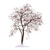 Apple-Baum im Winter unter Schnee Lizenzfreie Stockfotos