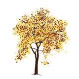 Apple-Baum mit Äpfeln im Fall Lizenzfreie Stockfotografie