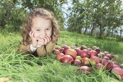 Apple on beautiful autumn Stock Image
