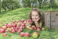 Apple on beautiful autumn Royalty Free Stock Photos