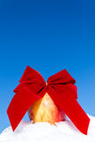 Apple with a big ribbon in the snow Stock Images