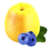 Apple and Bilberry isolated with clipping path. Isolated fruits. Isolated bilberry and Apple on white background with a clipping path as package design element royalty free stock photography