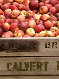 Apple Bin Royalty Free Stock Photography