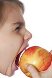 Apple bite. Child with the open mouth trying to bite an apple royalty free stock photos