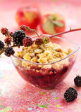 Apple and blackberry crumble Stock Photography