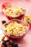 Apple and blackberry crumble. Delicious apple and blackberry crumble royalty free stock photos