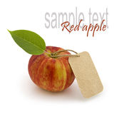 Apple with blank price tag Royalty Free Stock Photography
