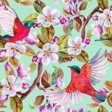 Apple-bloesem en vliegende vogels stock illustratie