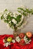 Apple blomning och Apple Royaltyfria Bilder