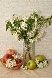 Apple blomning och Apple Arkivbild