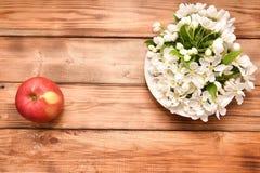 Apple blomning och Apple Arkivbilder