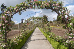 Apple blossom archway. Apple blossom arch and walkway Stock Photos