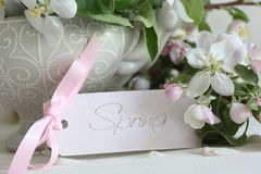 Apple blossom flowers in vase with gift card Royalty Free Stock Image