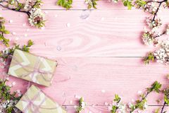 Apple blossom and gift boxes on pink wooden background. Copy spa Royalty Free Stock Photography
