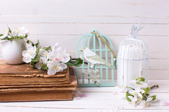 Apple blossom,  old books and candle in decorative bird cage on Royalty Free Stock Images