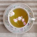 Apple blossom tea in white cup on beige linen. Top view square Royalty Free Stock Photography