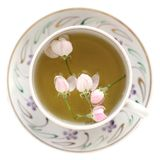 Apple blossom tea in white cup isolated Stock Photo
