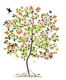 Apple blossom tree Royalty Free Stock Image