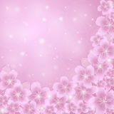 Apple blossom. Vector background with apple blossom Royalty Free Stock Image