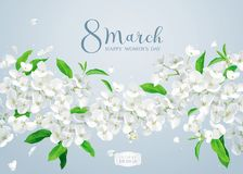 Apple blossom vector greeting card Royalty Free Stock Photo
