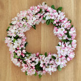 Apple Blossom Wreath Stock Images