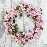 Apple Blossom Wreath. Apple flower blossom wreath over old distressed wooden background stock image