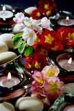 Apple blossoms. Flowers, scented candles and spa stones Royalty Free Stock Images