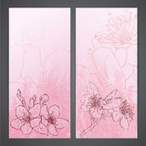 Apple blossoms drawing. Ink style  Royalty Free Stock Photography