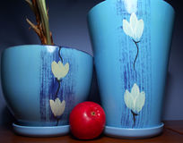 An apple and blue flower  pots Stock Images