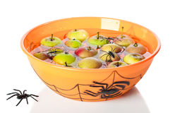Apple Bobbing At Halloween. With floating apples in spider bowl on white background Royalty Free Stock Photos