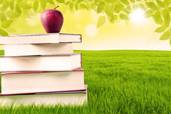 Apple and book of knowledge in the park Royalty Free Stock Photography