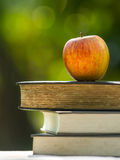 Apple And book at nature Stock Photography