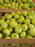 Apple box market Royalty Free Stock Photo