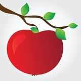 Apple on a branch. Simple vector illustration stock illustration