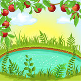 Apple branches above a lake. Vector landscape with apple branches above a lake Royalty Free Stock Images