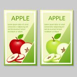 Apple brochure design. Flyer, banner template. Vector illustration of sliced fruits for banners, flyers Royalty Free Stock Photos