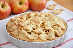 Apple Cake. On a plate Stock Images